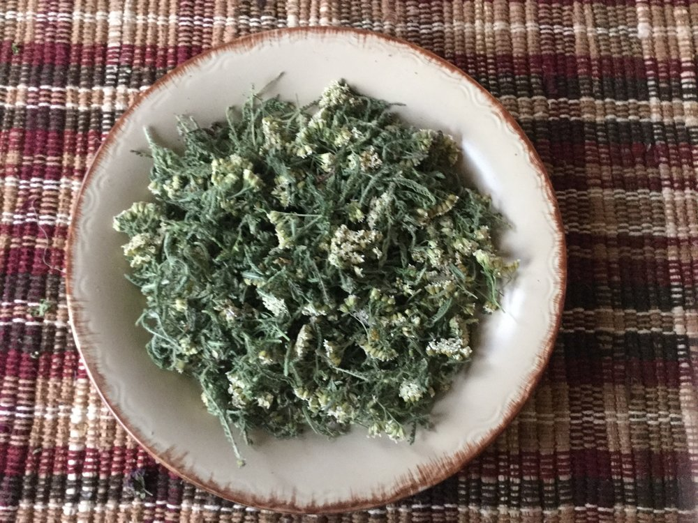 Yarrow, Aroma is Earthy sweetness. Less sweet than Lemon Balm or Sweet Marjoram. Mildly bitter with Earth tone flavors. One of the first three herbs we started with.