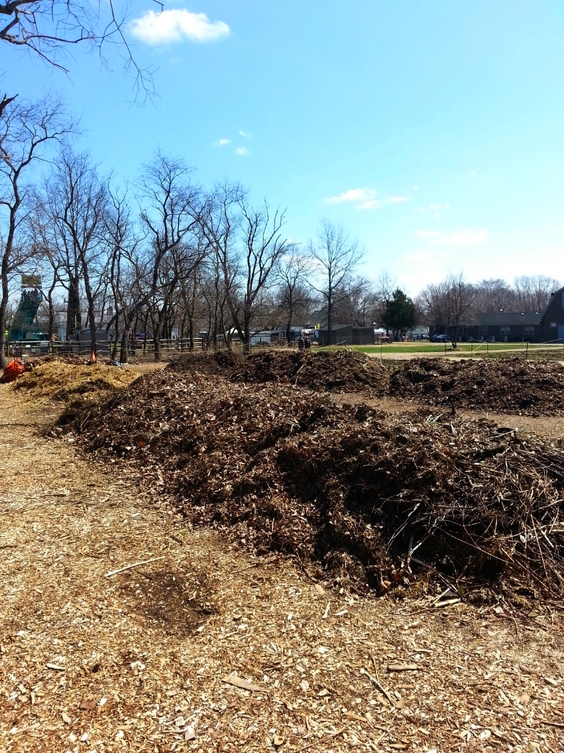 Massive compost piles in various stages of decomposition