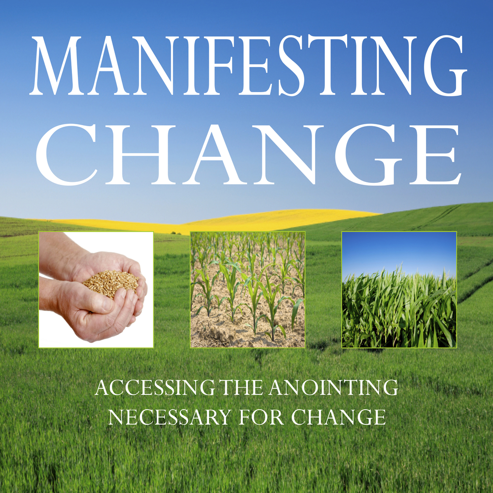 Manifesting Change Cover Pic.jpg