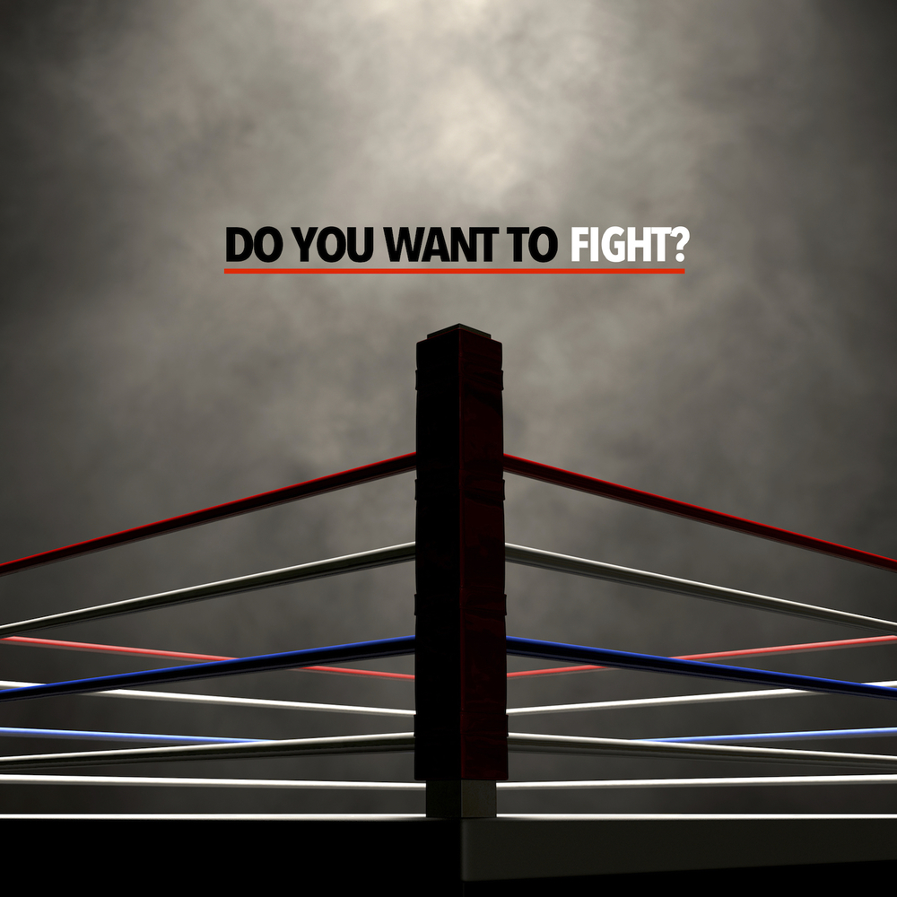 Do You Want To Fight