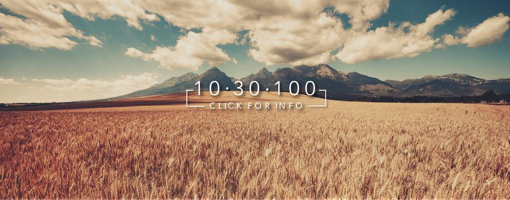 10 30 100 Banner.jpg