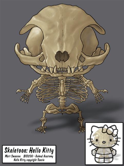Skeletoon: Hello Kitty
