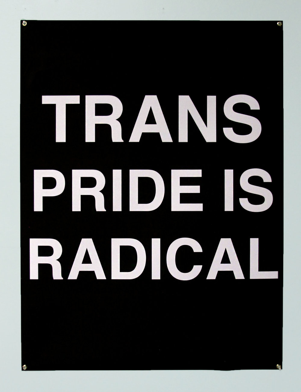"2 of 4,  If You Are Transgender... , 2017, digitally printed flag, 36"" x 60"""