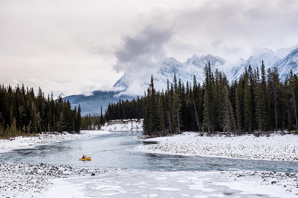 JBartlett-Nov-2015-Alberta-Jasper-3552_Web.jpg