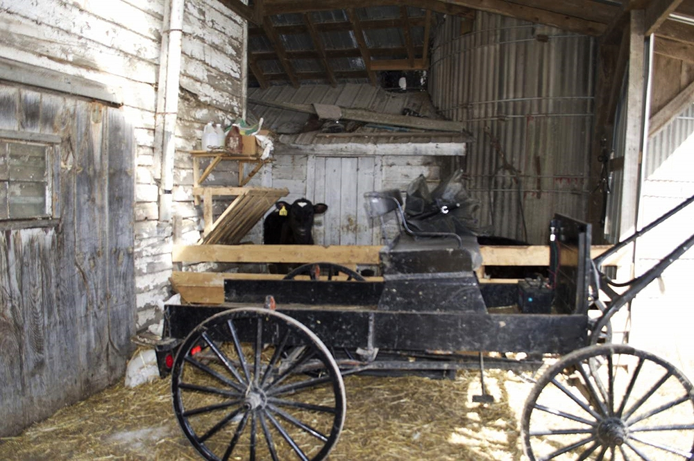 barn basement carriage.jpg