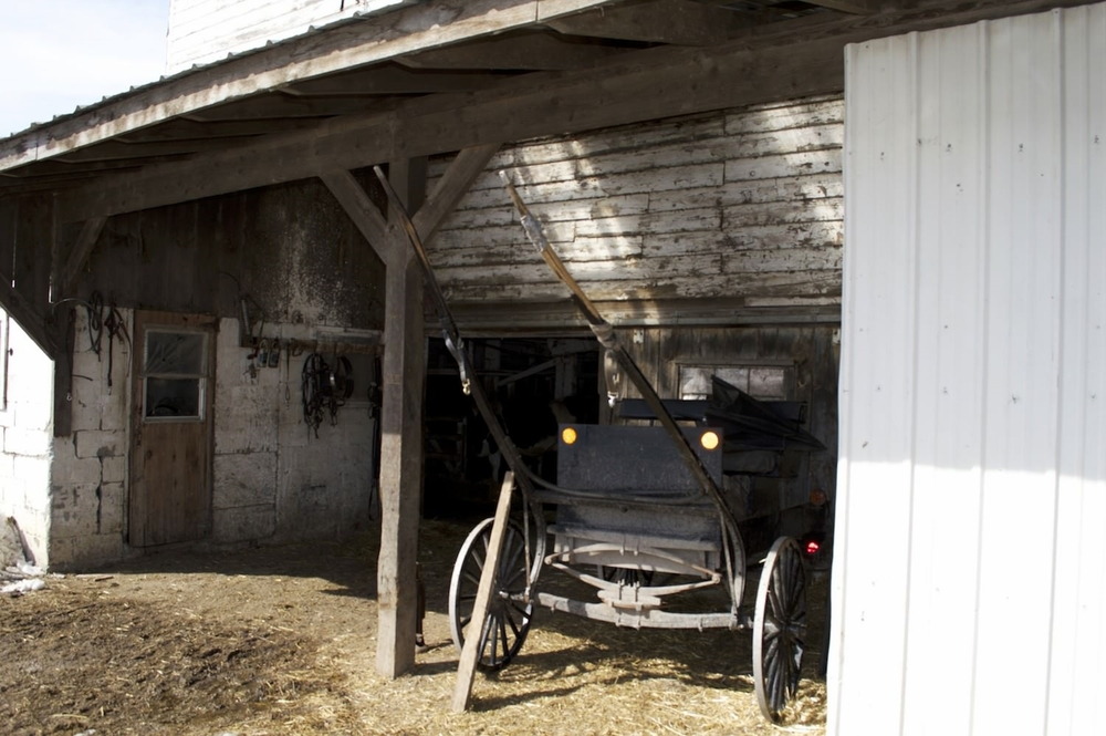 barn carriage.jpg