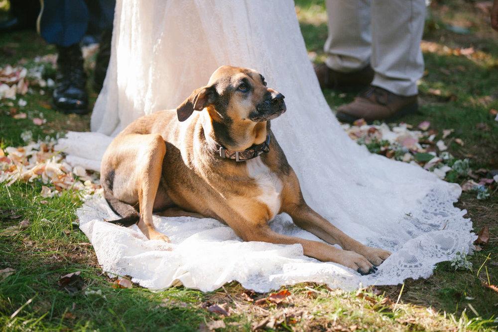 1640_Wedding_378.jpg