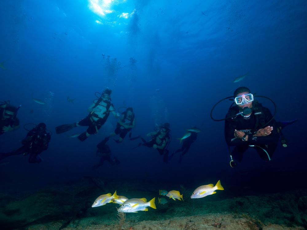 bahamadivers.jpg