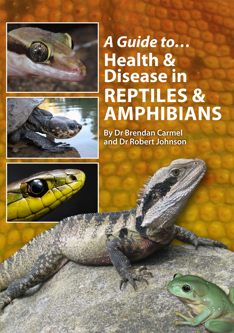 Keep reptiles? This is the book for you! Co-authored by Dr Brendan Carmel