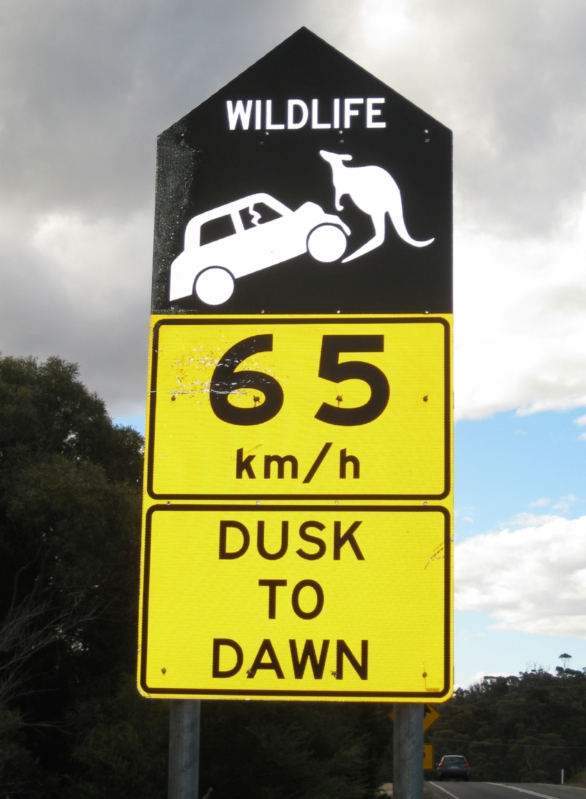 wildlife car sign.jpg