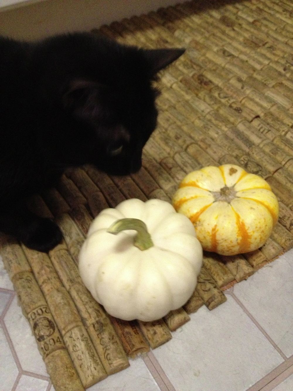 if you don't have opposable thumbs, no worries.  we can help you carve your masterpiece!