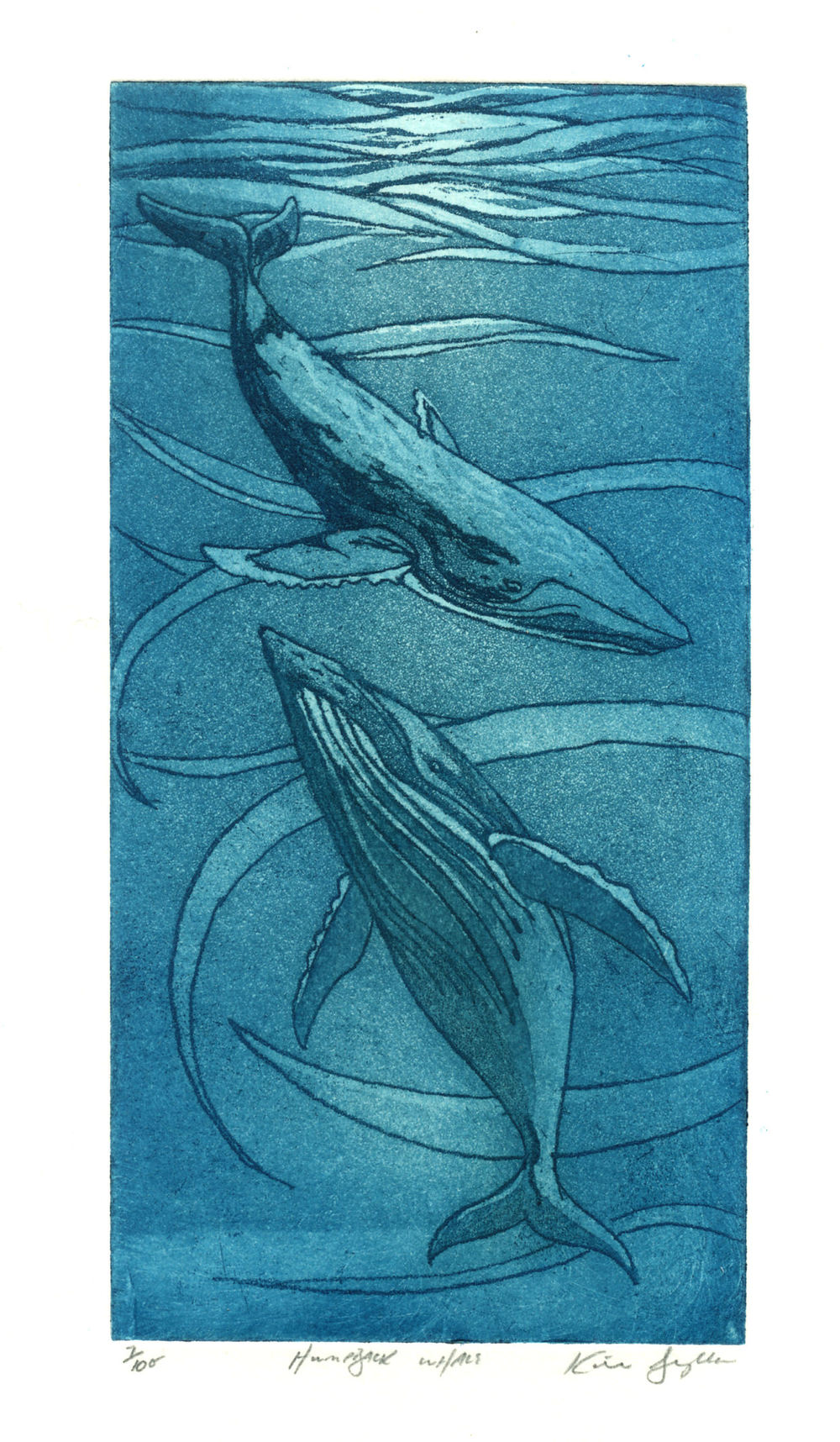 Humpback whales, etching and aquatint