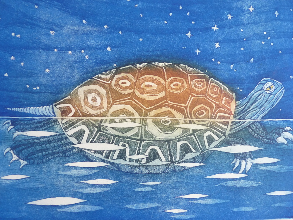 turtle and the big dipper