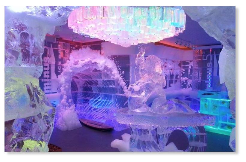 Minus5 Degree Ice Bar, Pointe Orlando