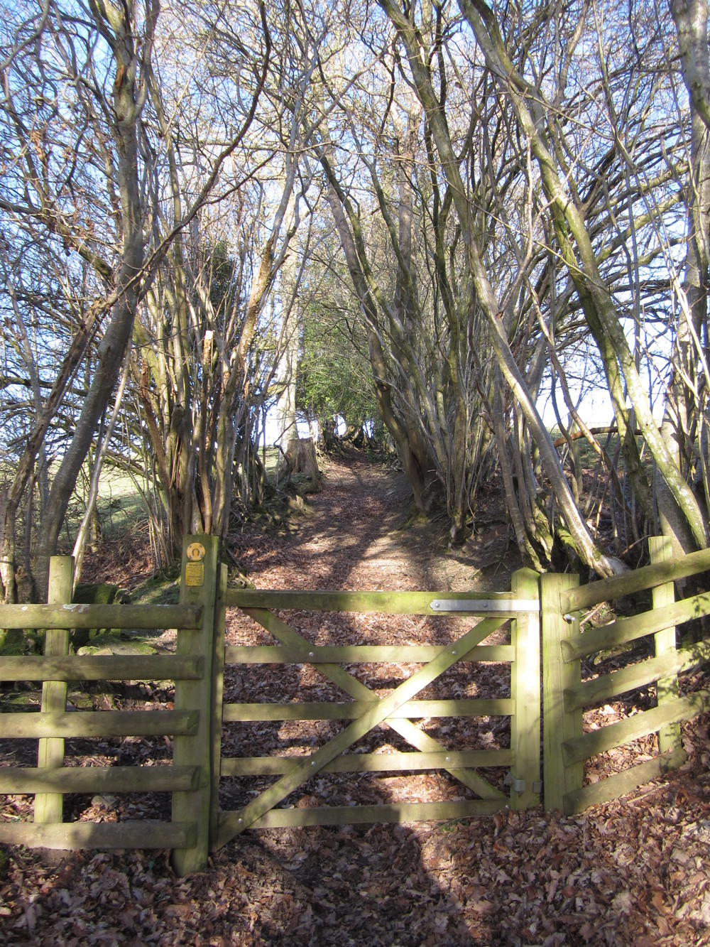 The countryside around Huntington is crossed with footpaths and bridleways and includes this ancient drovers path from the village to neighbourhing Glestry in Wales