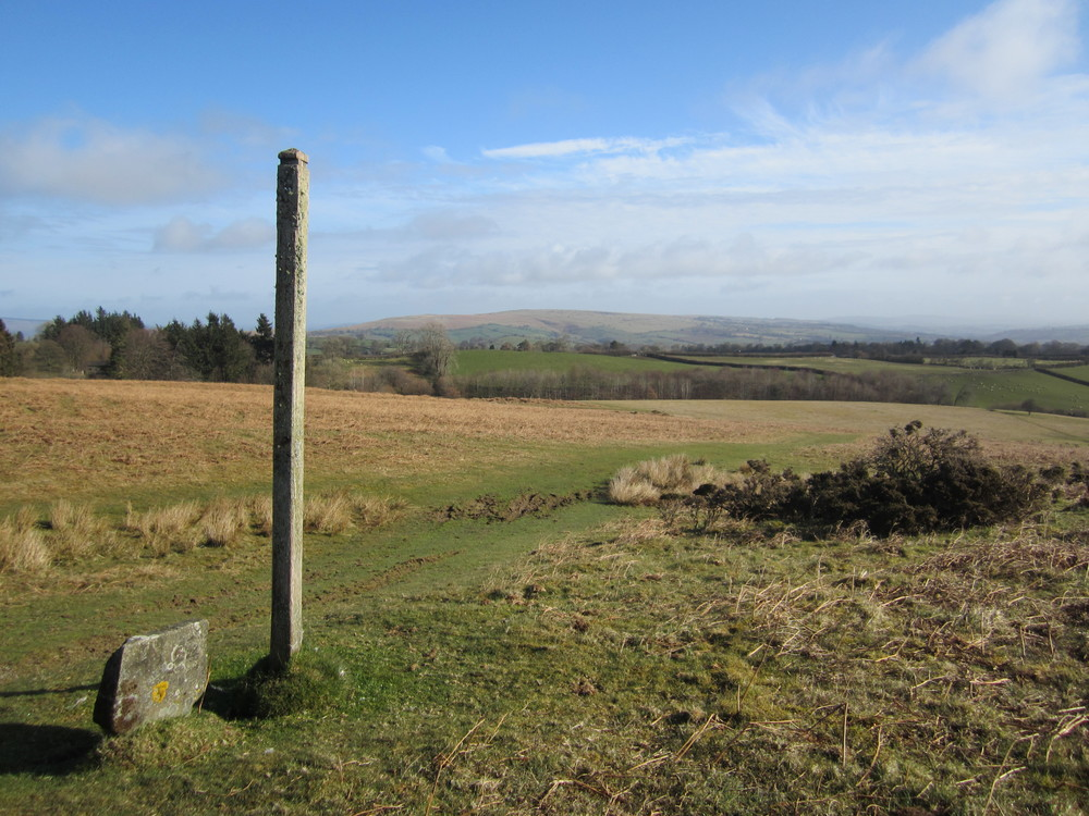 Offa's Dyke path on Disgwylfa, just west of Huntington with Hergest Ridge in the distance
