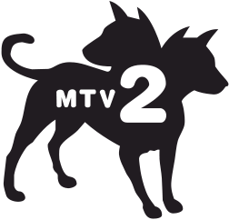 MTV 2.png