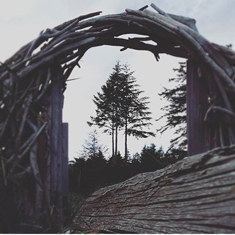 #sheexplores Perfect framing on this photo by @the_wandering_willow - nature takes the most beautiful shapes. | 📷 @the_wandering_willow