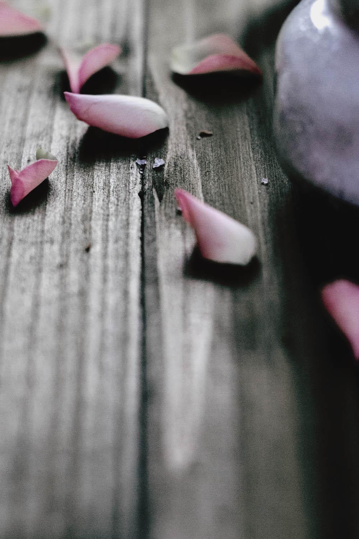rose petal 7.jpg