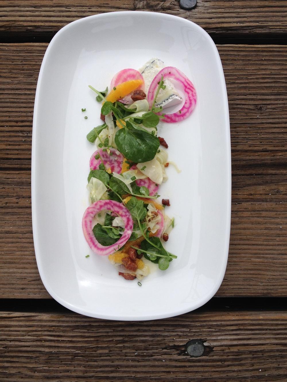 Fennel Salad (2).JPG
