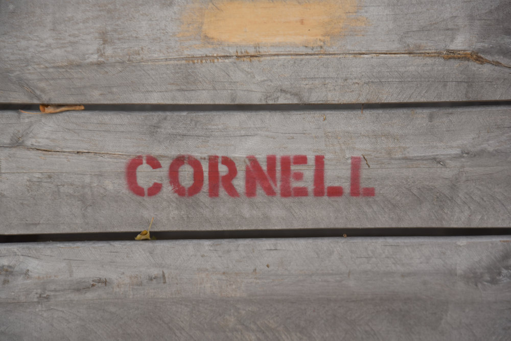 EL_Cornell_Tour_015.jpg