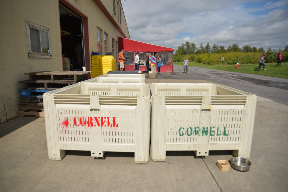 EL_Cornell_Tour_016.jpg