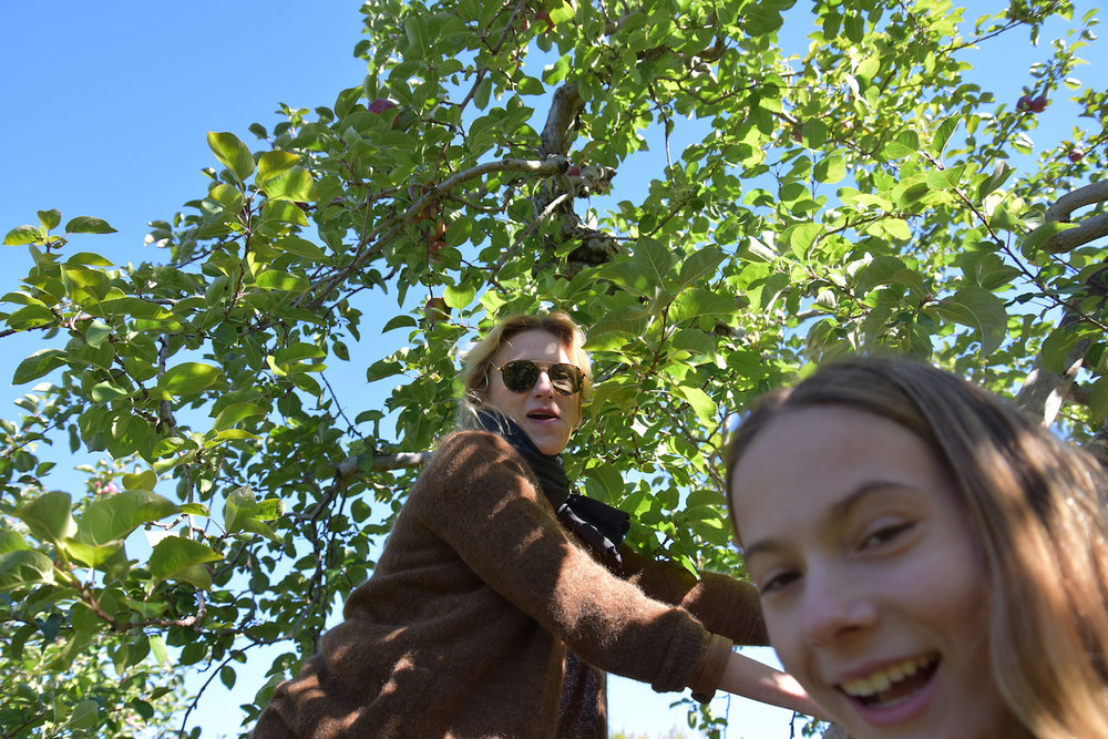 EL_Apple_Picking_2016_015.jpg