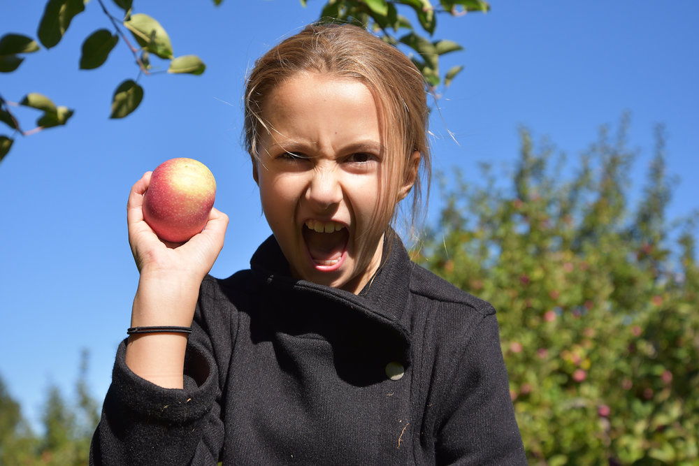 EL_Apple_Picking_2016_025.jpg
