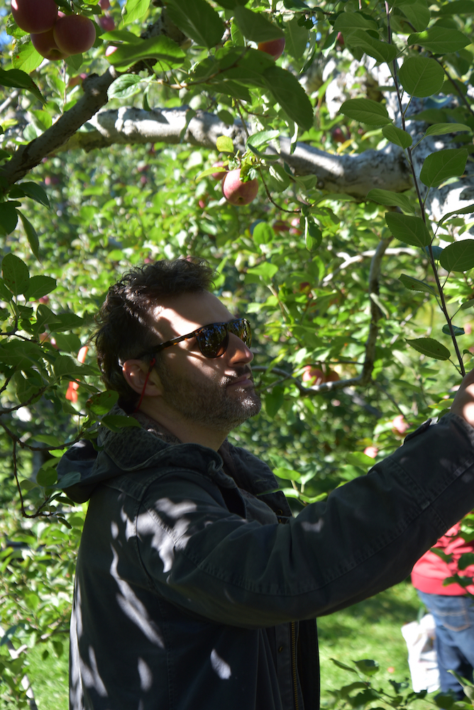 EL_Apple_Picking_2016_030.jpg