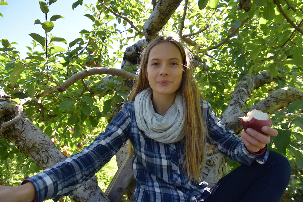EL_Apple_Picking_2016_027.jpg