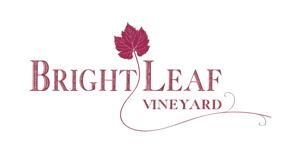 8 Logo Variation w/ vine Lt. magenta