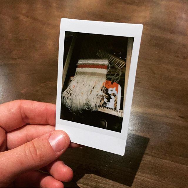 @yolounicorn666's AWESOME LOOM  #YAAHS  #Harmonic  #crocheterryday #love #loveit #yarnporn #crochetblanket #crochetersofinstagram #crochet #creativechaos #crocheteveryday #handcrocheted #handmade #instagood #yarnaddict  #sopretty #crochetlove #homemade #happyhooker #avsmakes