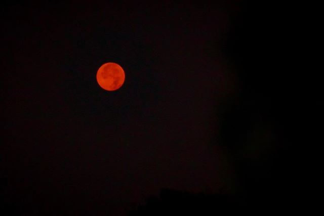 Eerie and captivating full moon this morning glowing bright red due to the devastating wild fires in the area. Sending prayers to all those affected and fighting on the front lines. // Tigard, OR . . . #fullmoon #wildfire #bloodmoon #eaglecreek #oregon #oregonexplored #oregonlife #discoveroregon #exploregon #exploreoregon #bestoforegon #fire #moonlight #moonrise #nightphotography #nightlife