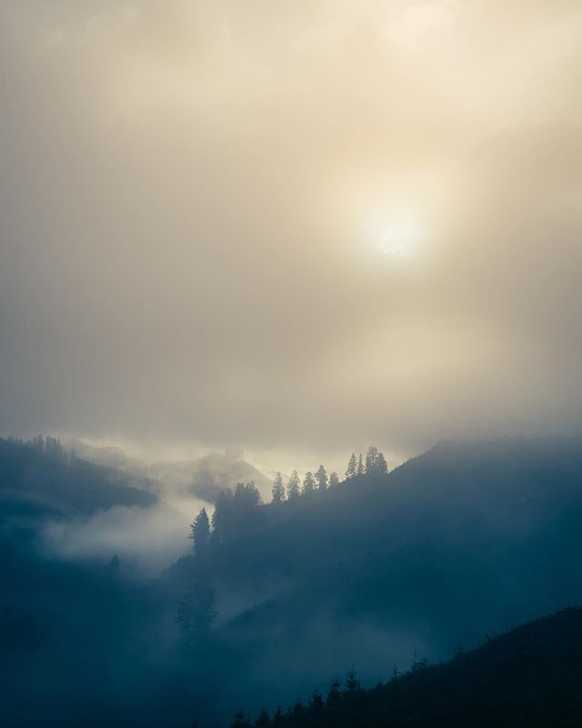 Early mornings. Crisp air. Eerie fog. Yep, it's November. // Logsden, OR . . . #huntingseason #pnw #fog #forest #sunrise #pnwonderland #oregon #oregonnw #exploregon #bewild #wildernessculture #leupoldcore #landscapephotography