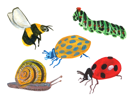 Garden Bugs for Illustickers