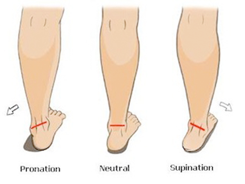 Foot Position in Walking/Running