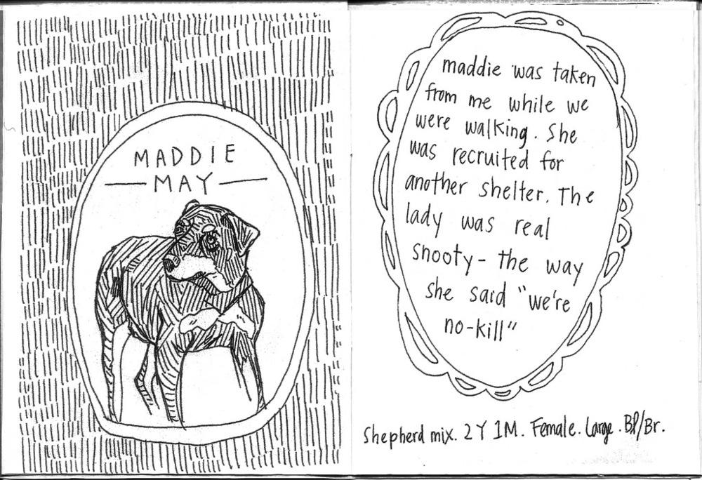 maddie may