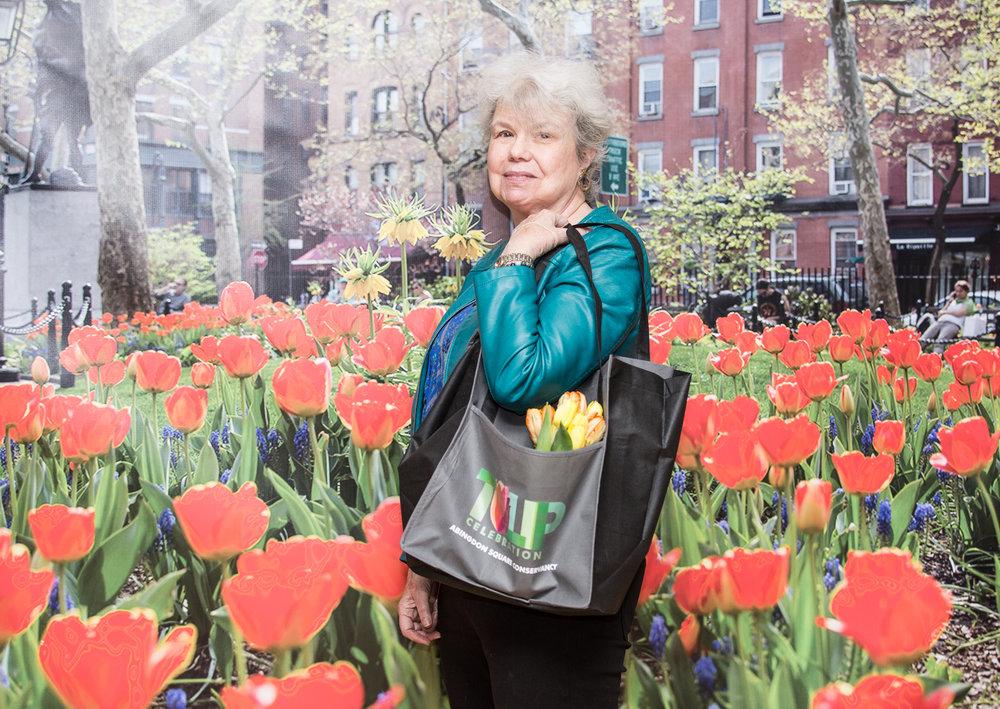 Tulipce-53.jpg