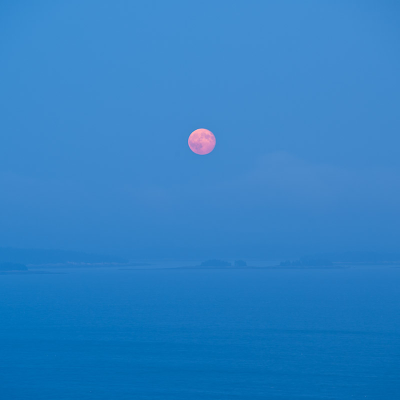 Harvest-Moon-Jim-Nickelson.jpg