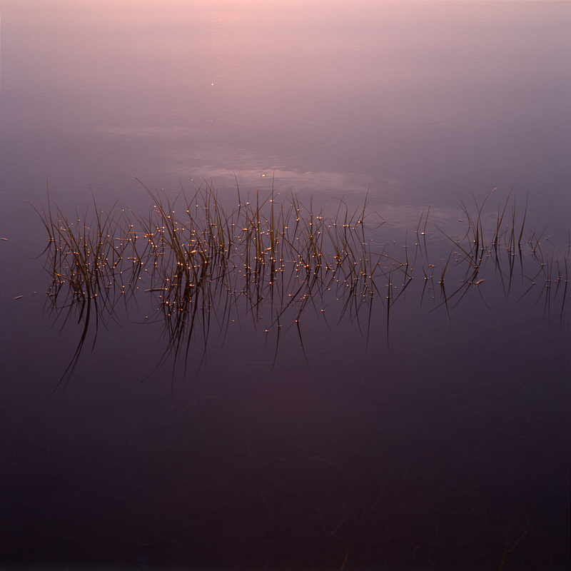 Nauset_Marsh_Sunrise_4_Fort_Hill_Cape_Cod_Nickelson.jpg