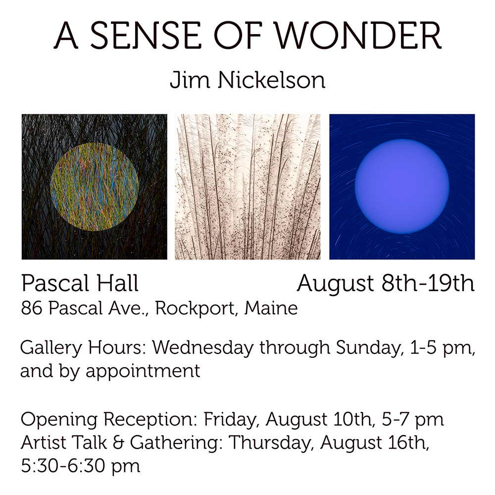 sense of wonder pascal hall square.jpg