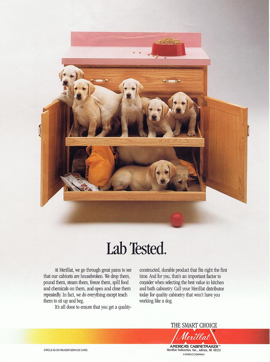 LabTested.jpg