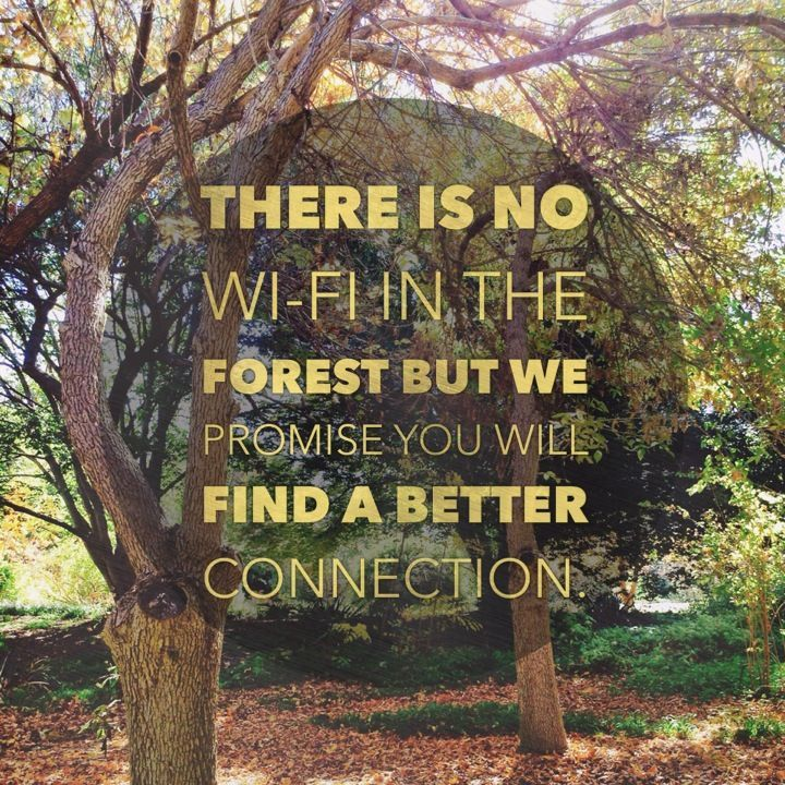 No-wifi-in-the-forest-nature-quotes