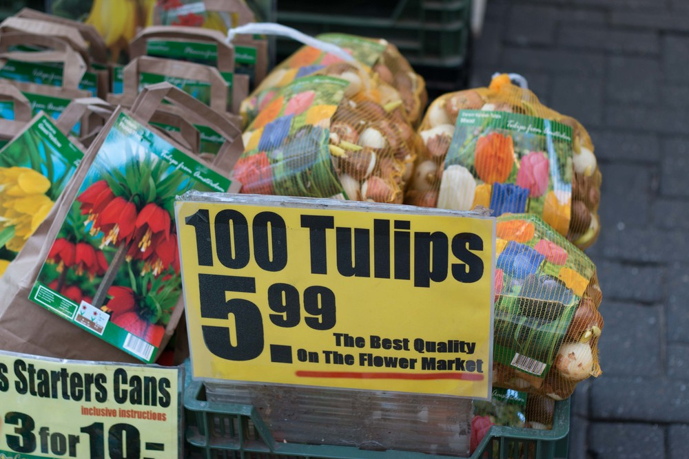 Their bulbs are so cheap here! Wish I could buy a bunch now and take them back to the states with me