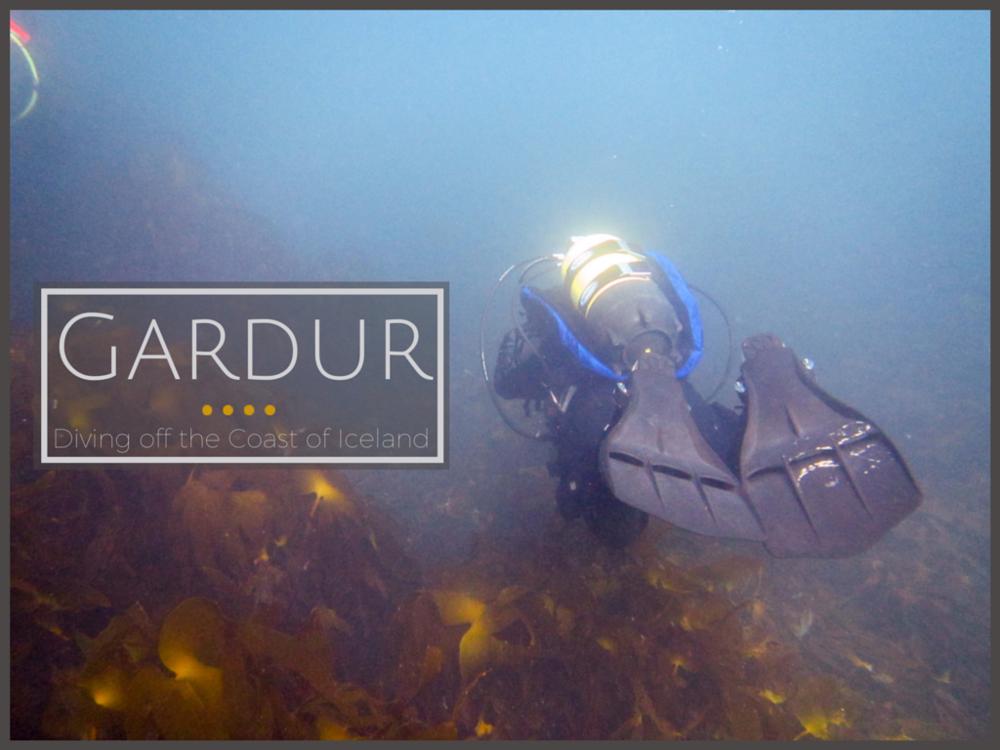 Diving Gardur Iceland