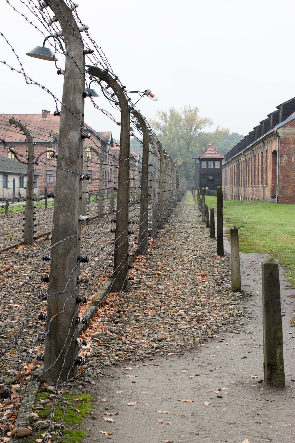 barbed wire fences surrounded the camp