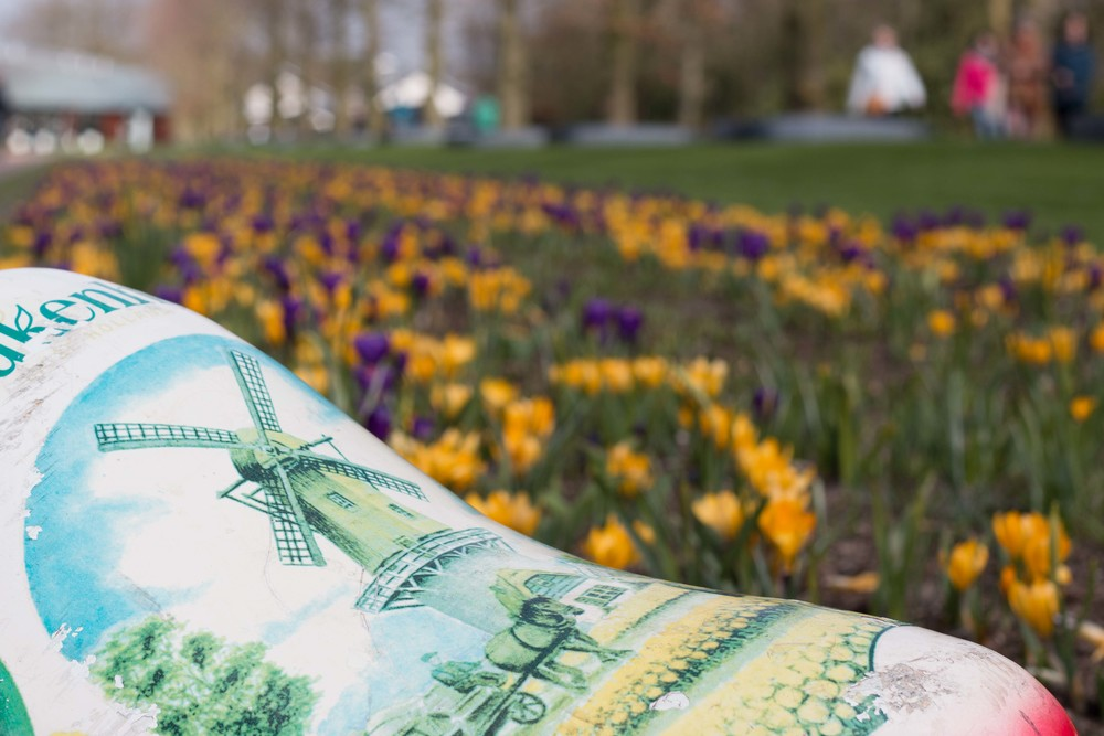 Keukenhof Tulip Festival in Leiden