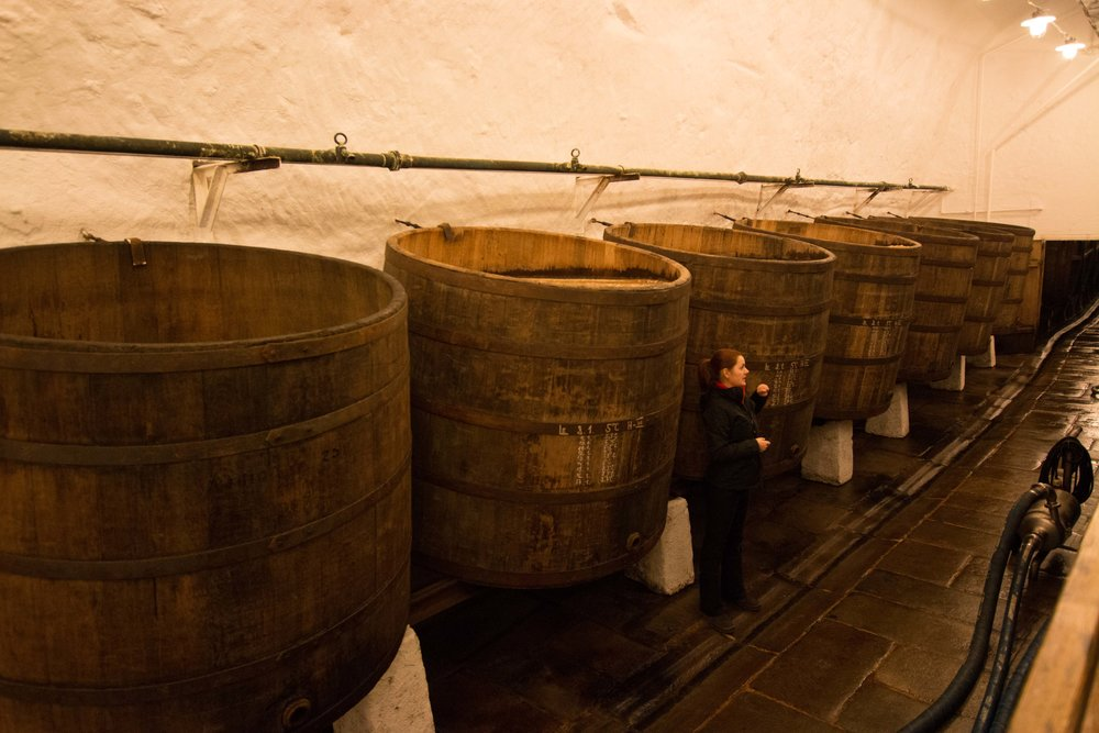 Barrels of open-top fermented PIlsner Urquell!