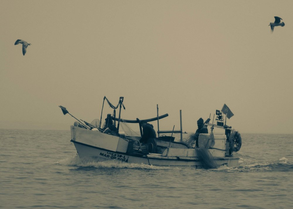 Fisherman of the Algarve; Lagos