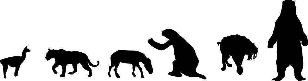 Extinct South American megafauna includes camelids, felids, equids, ground sloth, and large bear.
